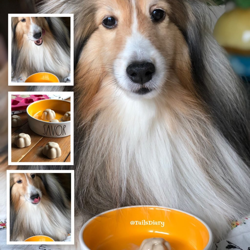 Dog ice cream for National Ice Cream Day